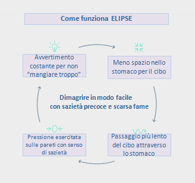 Dimagrire in modo facile con sazietà precoce e scarsa Fame - Come funziona Elipse - SCHEMA Grafico